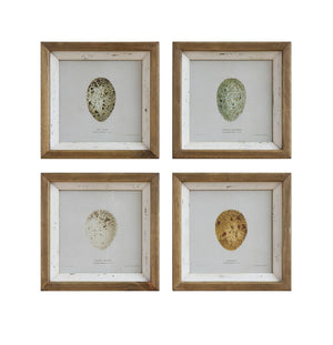 Square Wood Framed Wall Decor w/ Egg, Distressed White, 4 Styles
