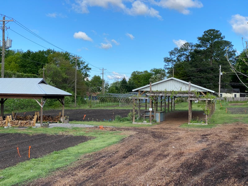 What's Happening on the Farm - April 2020