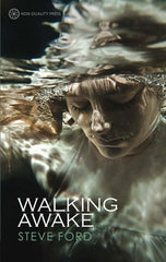 Photo of Walking Awake - (e-book edition)