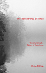 Photo of The Transparency of Things