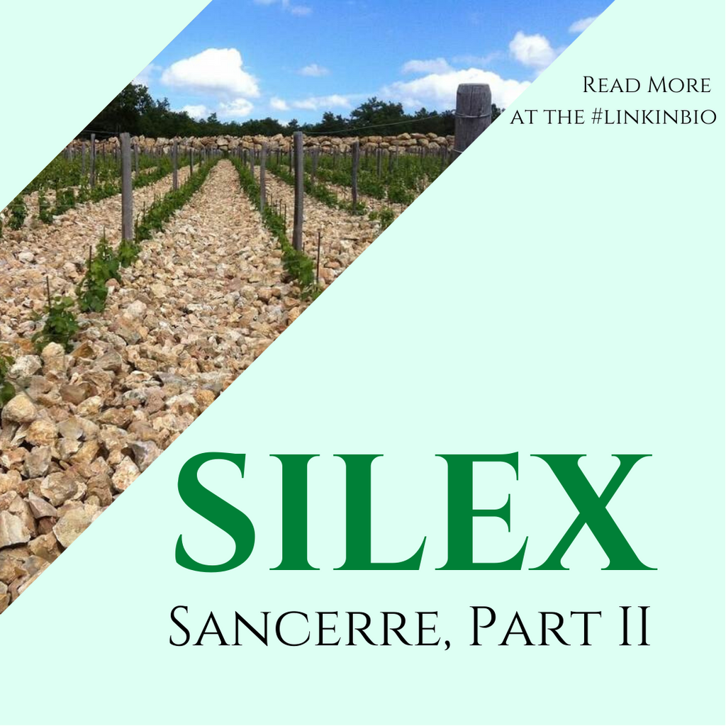 Part 2 of our Sancerre Guide is Here! All About Silex!
