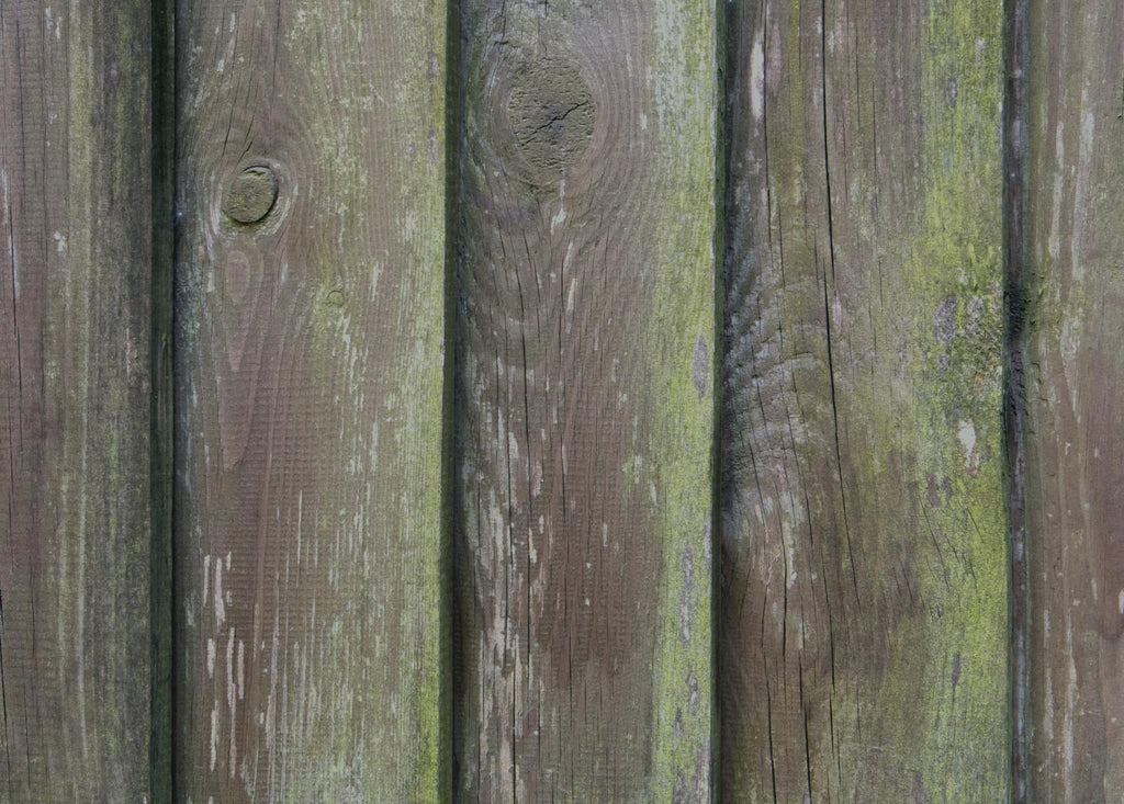How To Get Mildew And Algae Off Your Fence Or Siding