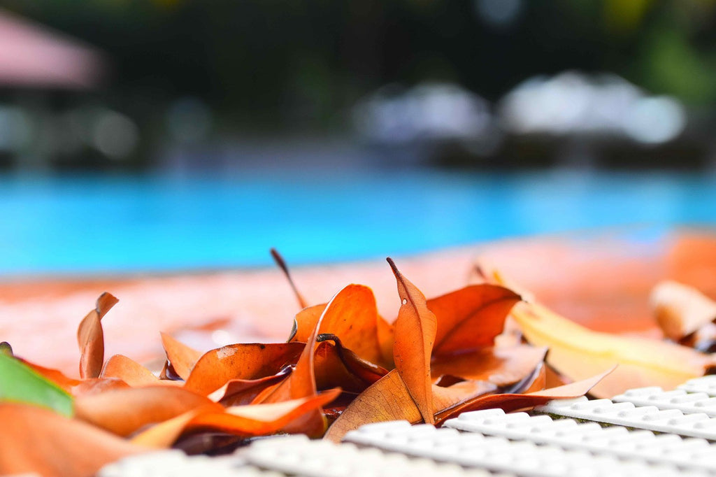 Chemicals That Will Make Maintaining Your Swimming Pool Safe & Easy