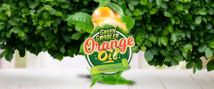 orange oil cleaner d-limonene natural