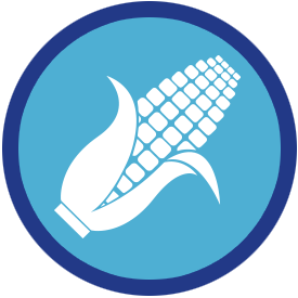derived from corn icon