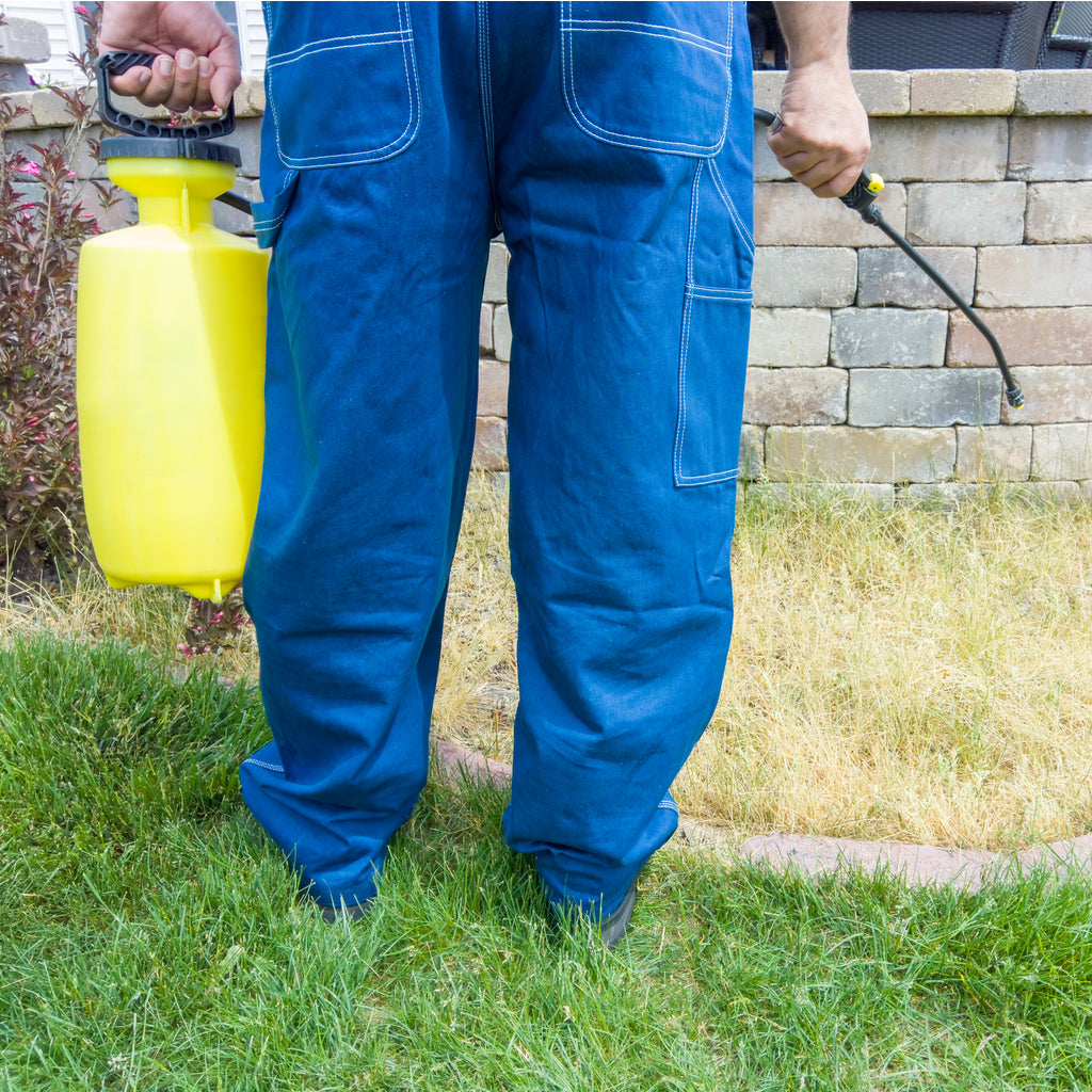 How to Boost the Effectiveness of Your Weed Killer