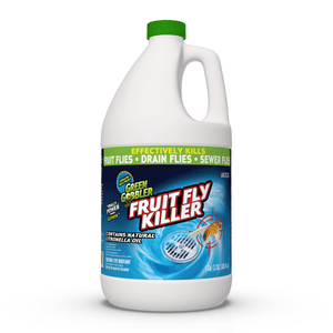 Fruit Fly Drain Treatment