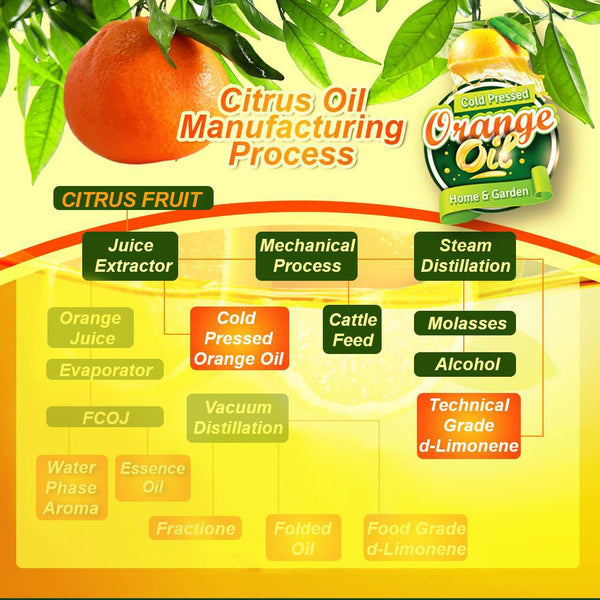 cold pressed orange oil manufacturing process