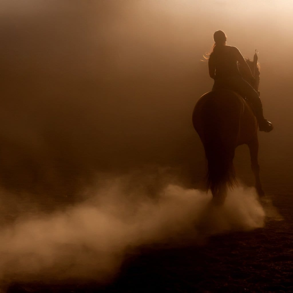 The Importance of Horse Arena Dust Control