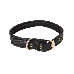 Black Sparkle Collar