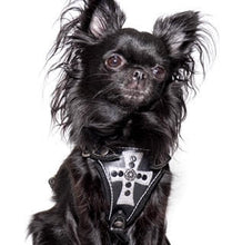 Load image into Gallery viewer, Gasparilla Harness- Black