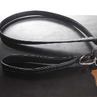 Load image into Gallery viewer, Ostrich | Black Dog Leash