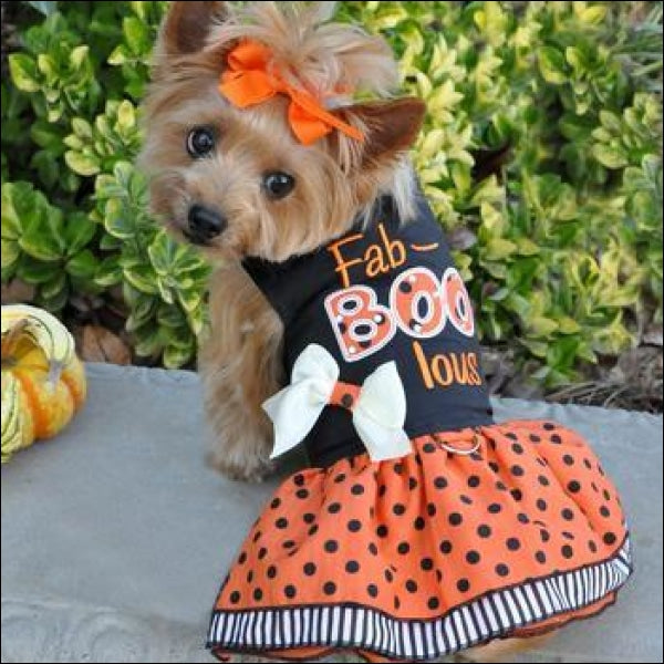 Fab-BOO-lous Dog Dress