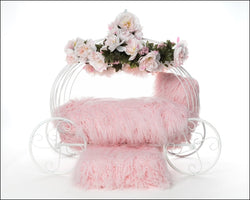 Flower Girl Dog Carriage Bed