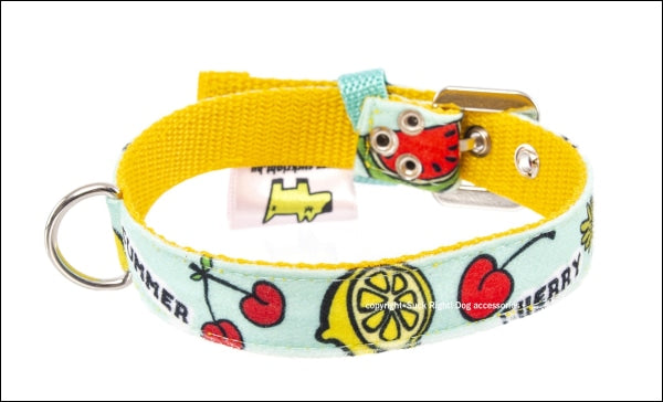Fruits Dog Collar