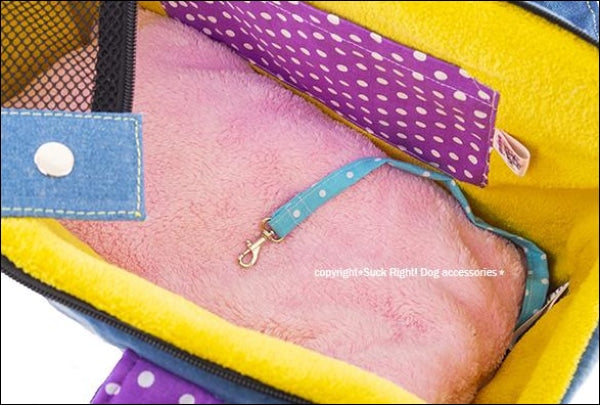 Fruits Ice Cream Zipper Dog Carrier