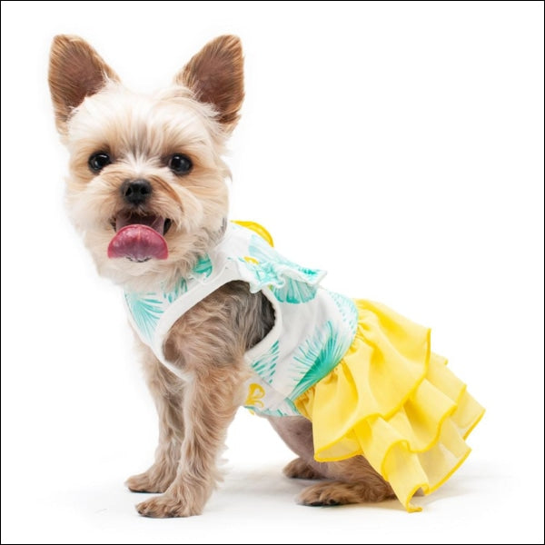 Leafy Dog Dress