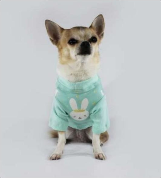 Mint Long Sleeve Bunny Shirt