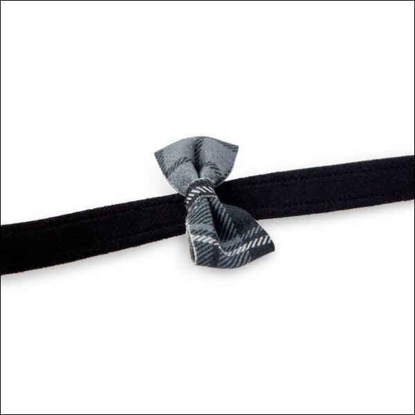 Scotty Leash Charcoal Plaid Bow Tie