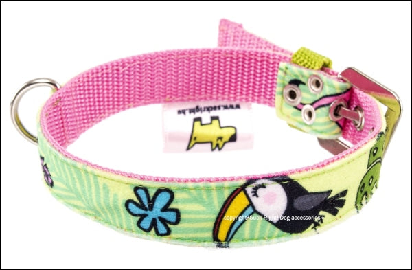 Toucan Green Dog Collar