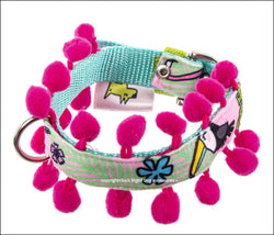 Toucan Pink Dog Collar