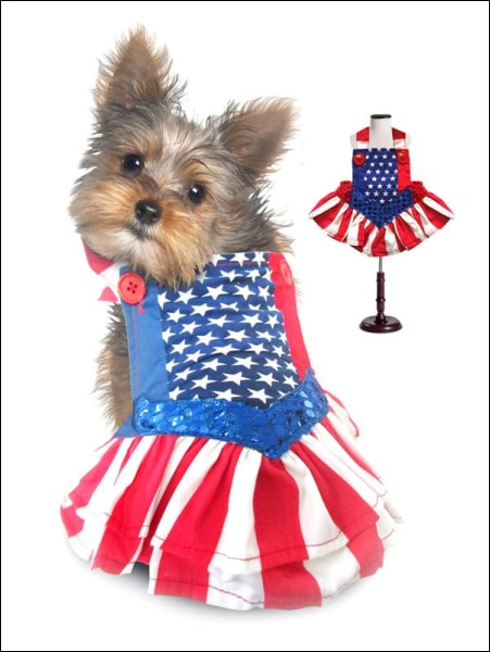 Wonder Dog Costume