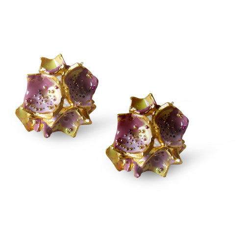 Galaxea Earrings