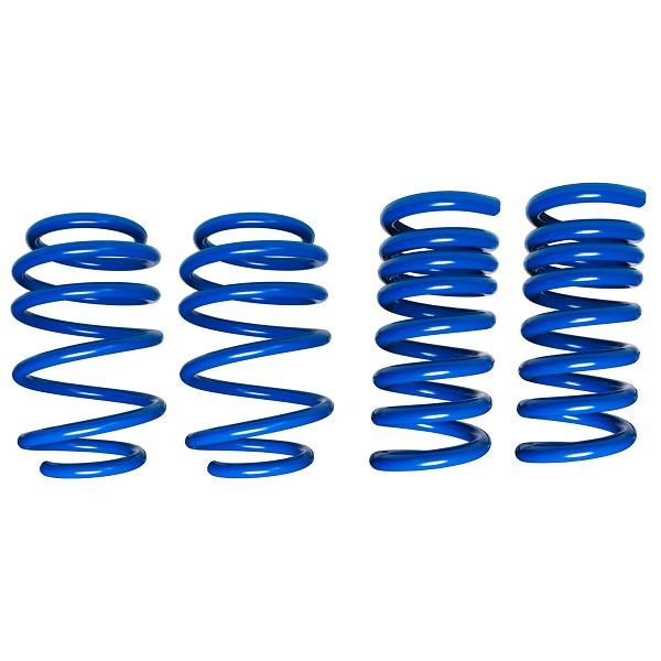 STEEDA S550 LOWERING SPRINGS - COMPETITION DUAL RATE SPRINGS