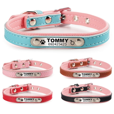 OB FLOWGOGO Personalized Engraved Cat Collar