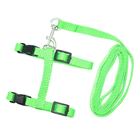 Adjustable Nylon Pet Cat Harness
