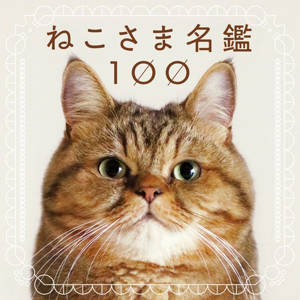 100 Cats 100 Minds