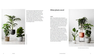 Plant Style: How to Greenify Your Space