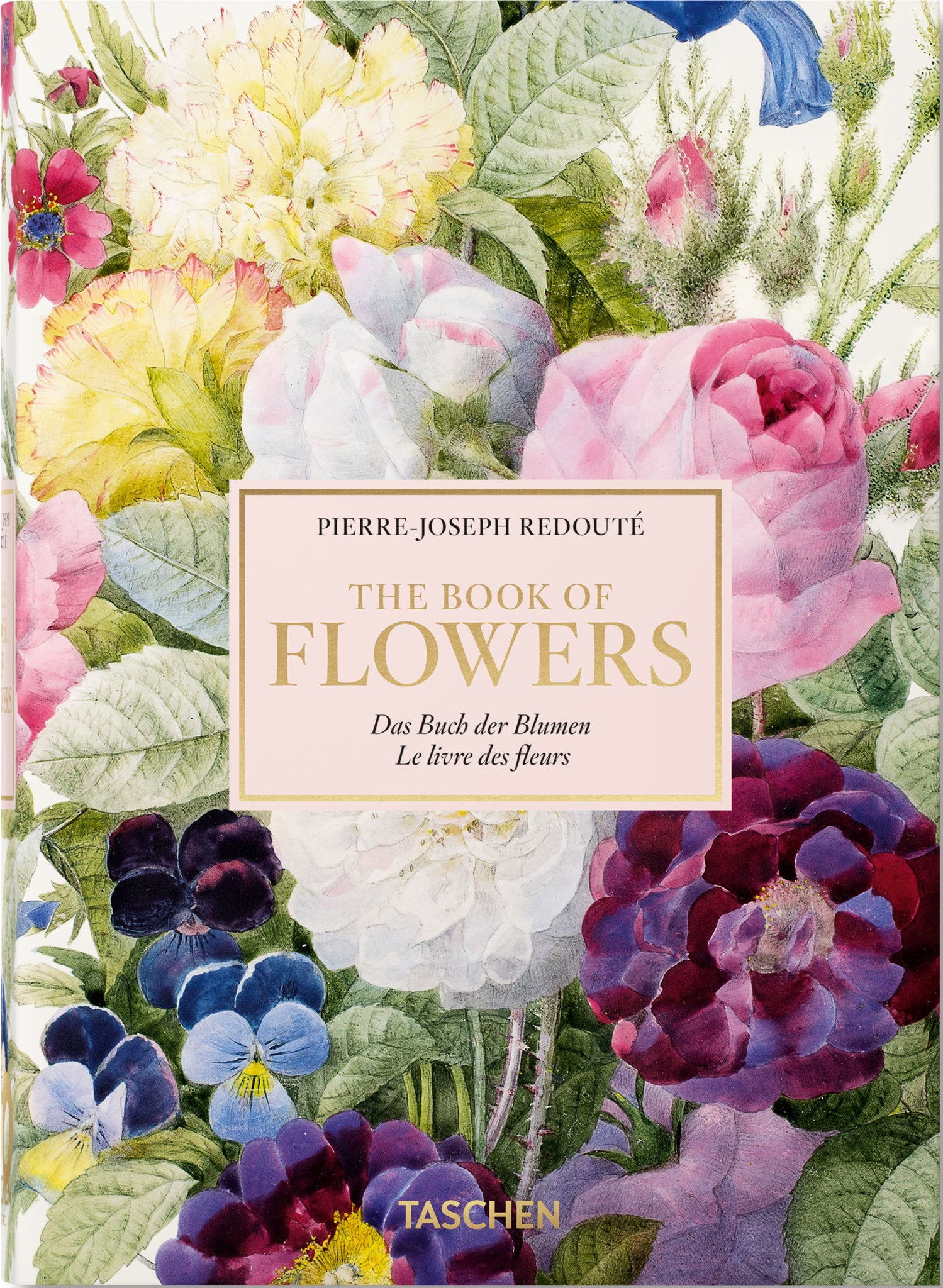 Pierre Joseph Redoute - The Book of Flowers: Taschen 40