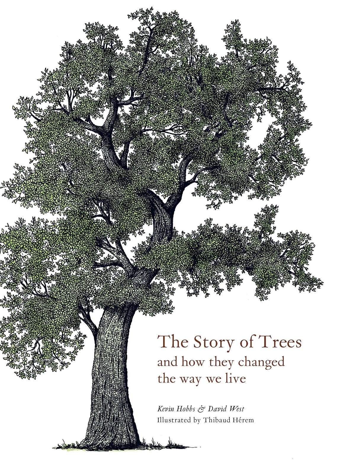 Story of Trees and How They Changed the Way We Live