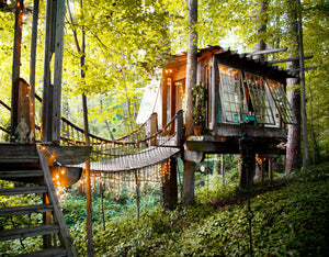 Hinterland: Cabins, Love Shacks and Other Hide-Outs