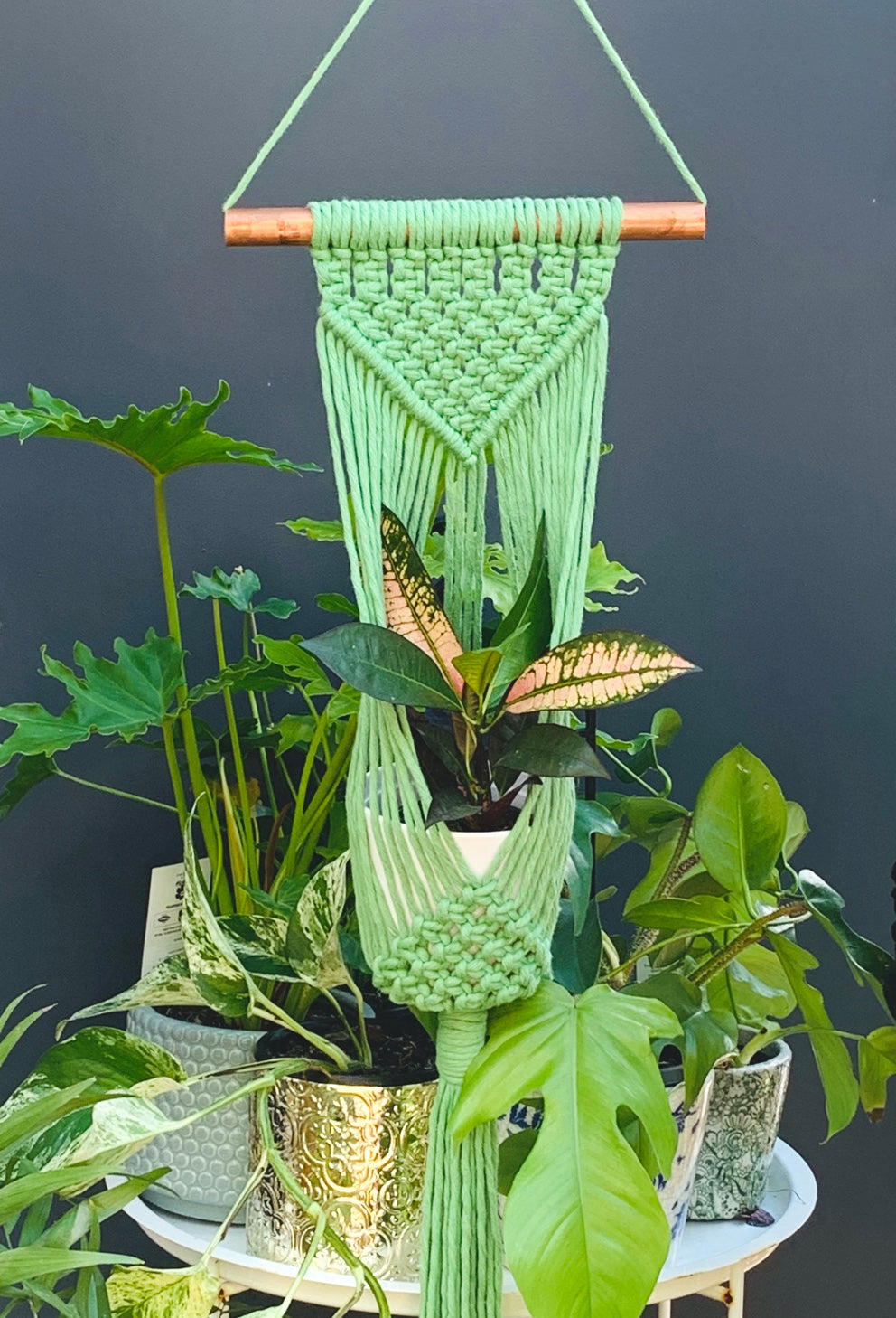 Green Wall Plant Hanger