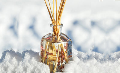 Perfumes 101- Winter Fragrances and Popular Notes