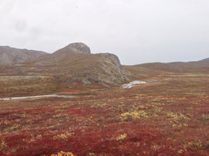 ALONE IN THE ARCTIC - My journey on the Arctic Circle Trail (Greenland) (Day 3)