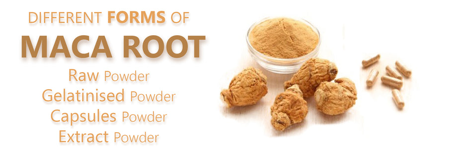 Difference Between Raw, Gelatinsed, Extract & Capsuled Maca Root Powder