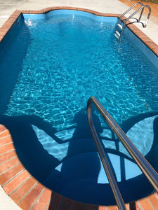 Naples Fiberglass Pool steps