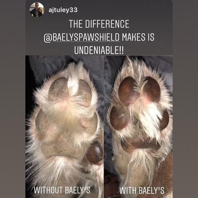 Customer Social Media Post - Baely's Paw Shield