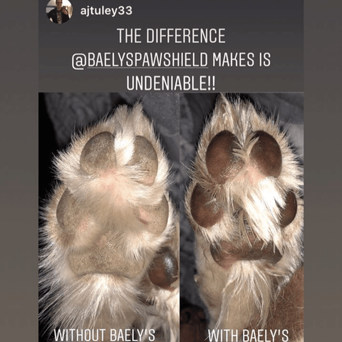 Baely's Paw Shield is Better than Mushers Wax | Keeps Paws Hydrated | Protects from Hot Temperatures | Heals Raw Dry Cracked Paws