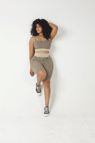Fierce Feline Seamless Short Set