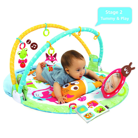 Play'N' Nap Gymotion Baby Play Mat Activity Gym from birth to 1 year