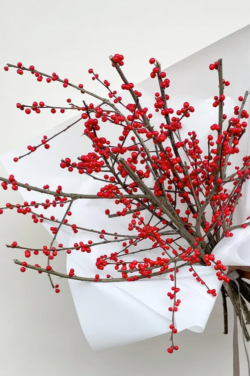 Winterberry - Ilex - Vancouver Flower Delivery