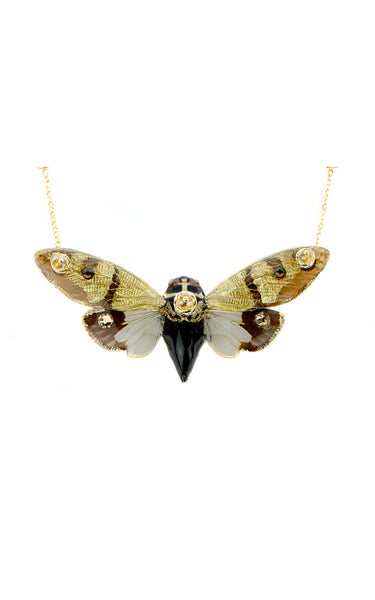 *GENUINE* Small Cicada Necklace with 18K Gold Filled Chain