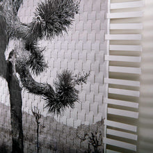 Load image into Gallery viewer, CABEZA DE VACA LIMITED EDITION - TWO WOVEN PHOTOGRAPHS