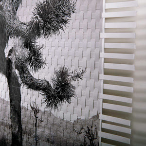 CABEZA DE VACA LIMITED EDITION - TWO WOVEN PHOTOGRAPHS