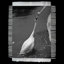 Load image into Gallery viewer, FEEDING GOOSE - WOVEN PHOTOGRAPH