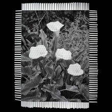 Load image into Gallery viewer, LILLIES - WOVEN PHOTOGRAPH